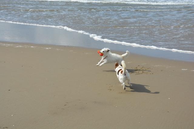 M&M op het strand